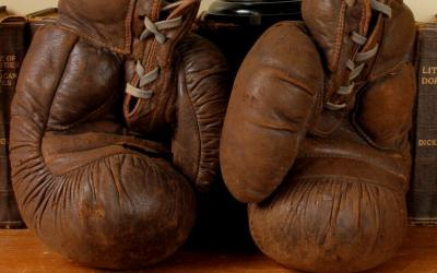 Frank Bryan Boxing Gloves